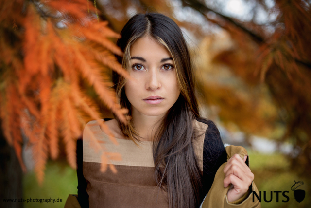 2014, Portrait Heidelberg, Herbst